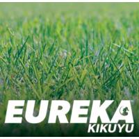 Eureka Kikuyu - Instant Turf