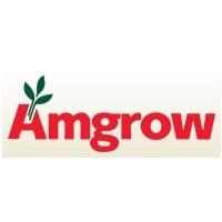 Amgrow