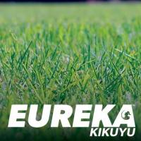 EUREKA KIKUYU.png