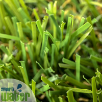 SYNLawn: Classic 35 Synthetic Grass