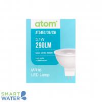 ATOM CW LED Globe.png